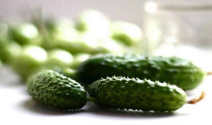 Useful cucumber gherkins